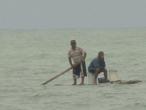 Fisherman paddle back to shore from a day on their boats