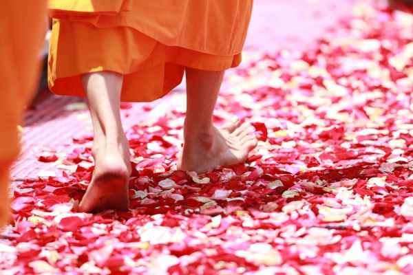monk-walking-rose-petals-buddhism-50681